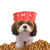 9#7 Best Dog Food for Shih Tzu Puppy